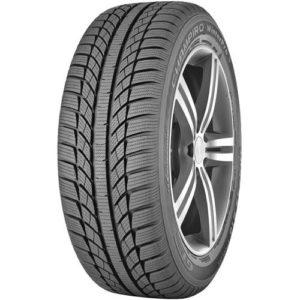 Зимняя шина GT Radial