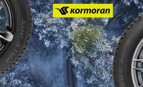 Зимние шины Kormoran